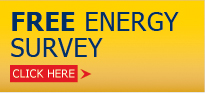 FREE Energy Survey